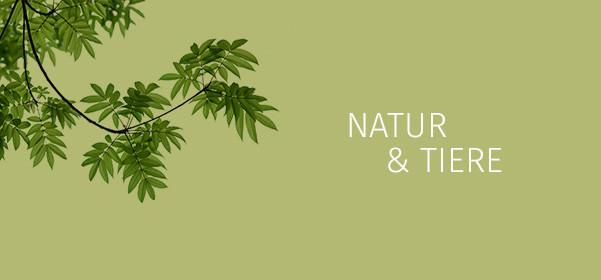 Natur/Tiere